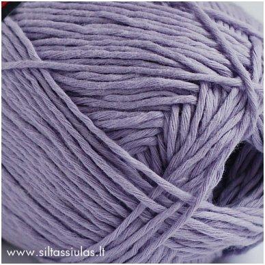 Denim 05 pilkai violetinė 2