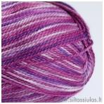 Giza Piu 04 sodri violetinė