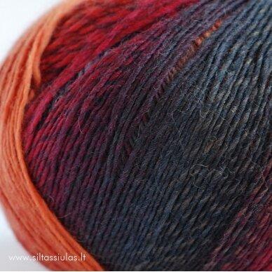 Hjertegarn Longcolors 17 Rudens ritmu 3
