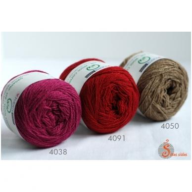 Organic 350 erškėtrožių raudona 4091 3