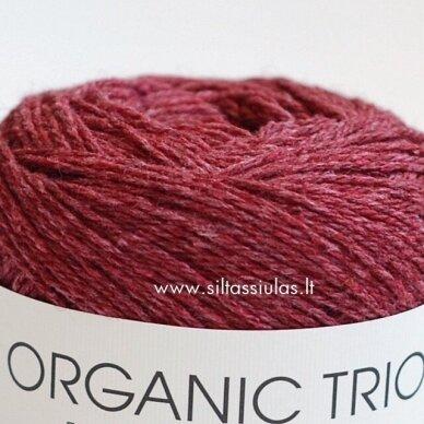 Organic Trio 5016 vyšnių bordo 2