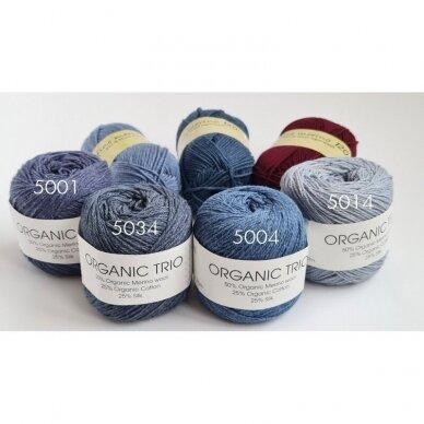 Organic Trio 5034 pilkai mėlyna 3